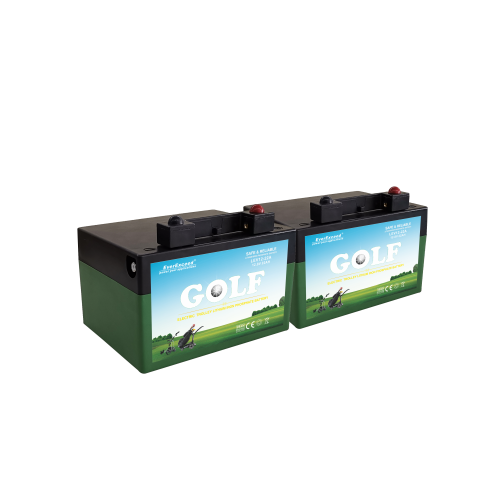 EverExceed LiFePO4 battery system